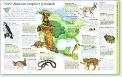 Geo-Innovations North American Grasslands